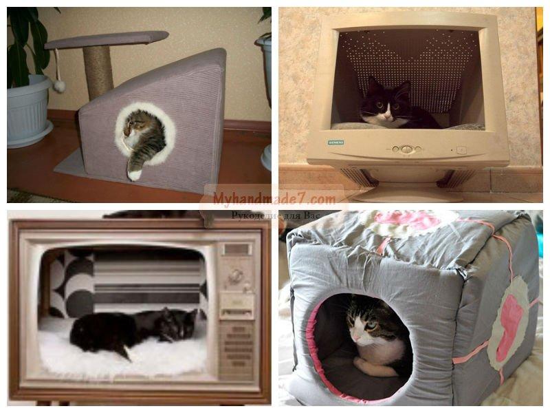 Подарок для кота своими руками - Поселок Лесной родник